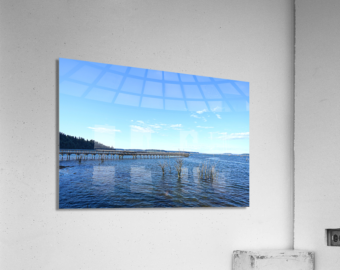 One Day at the Estuary 2 of 4  Acrylic Print