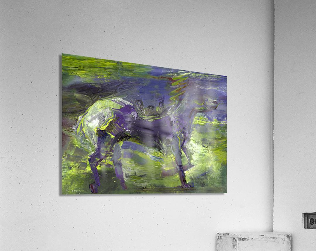 Ghost Rider-  Sage  Acrylic Print