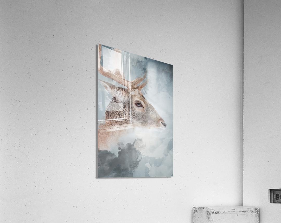 Cerf   Acrylic Print