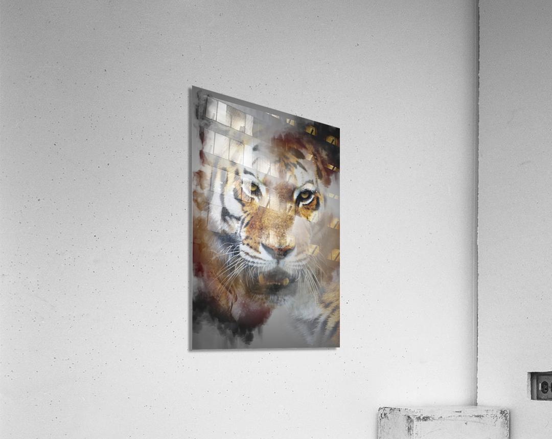 Tigre  Acrylic Print