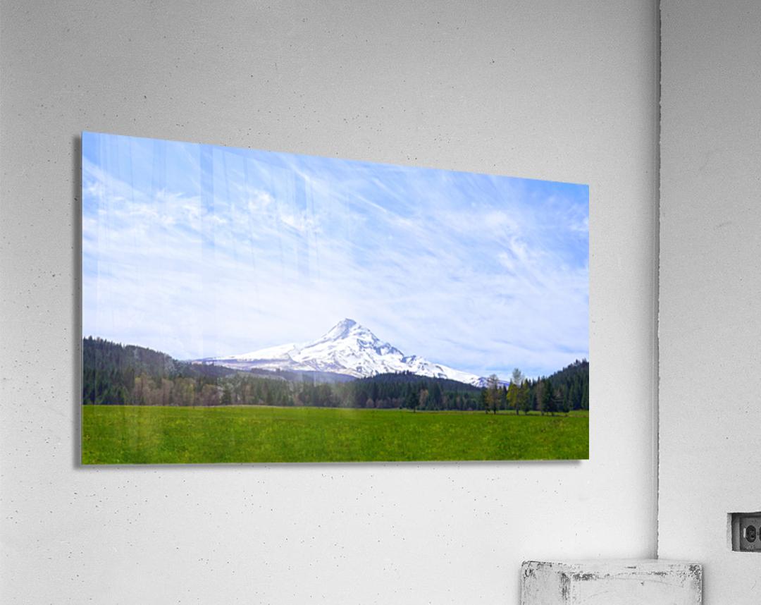 Majestic Mount Hood   Cascade Mountain Range Oregon  Acrylic Print
