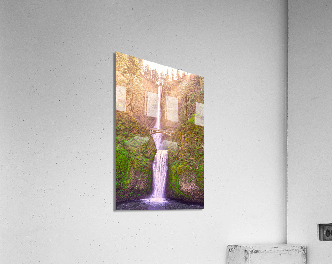 Multnomah Falls Bathed in Sunlight   Columbia River Gorge National Scenic Area   Oregon Pacific Northwest  Acrylic Print