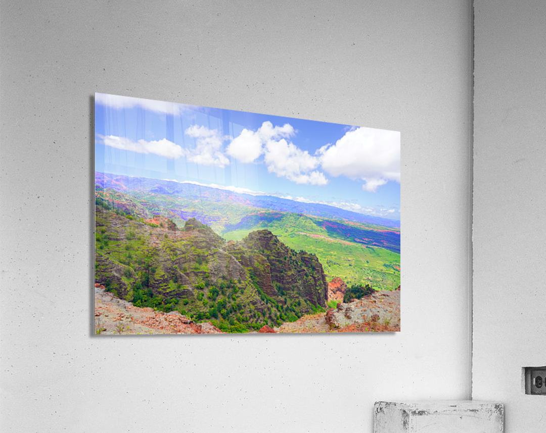 Waimea Canyon Area in the Puu Ka Pele Forest Reserve on the Island of Kauai Hawaii  Acrylic Print