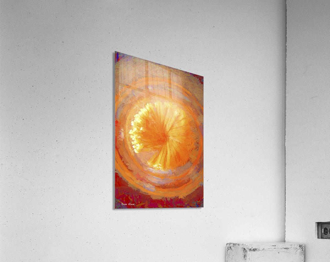 Pastar_140902_13094 HXSYV  Acrylic Print