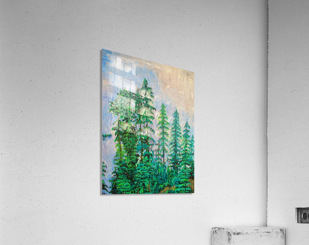 manali  Acrylic Print