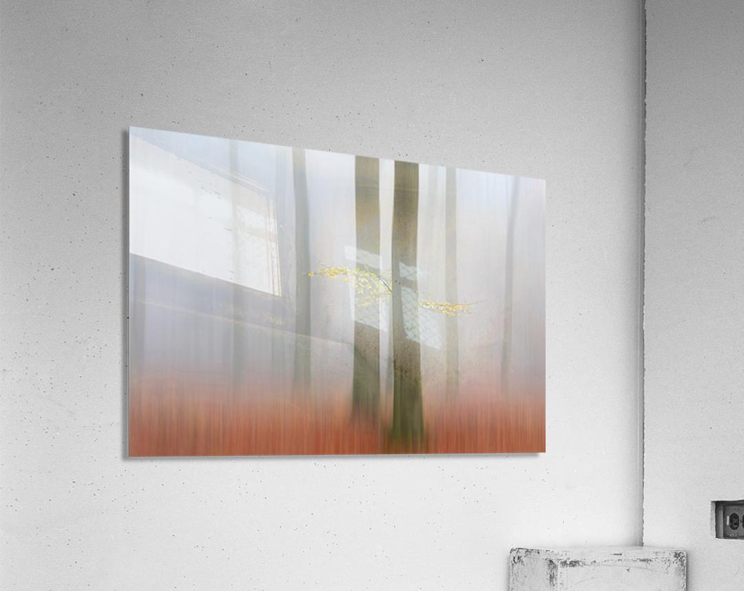 Autumnmorning  Acrylic Print