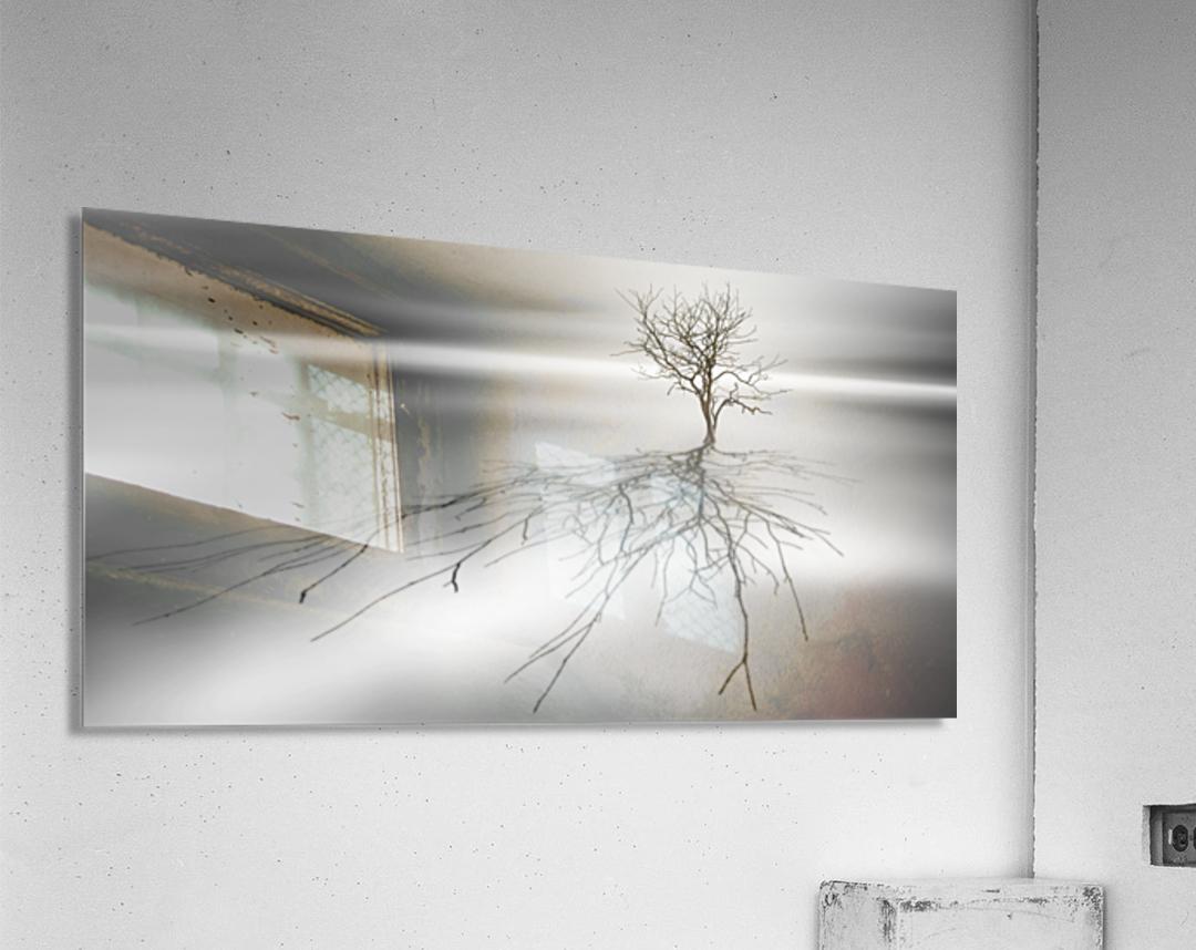 Even the dead cast shadows  Acrylic Print