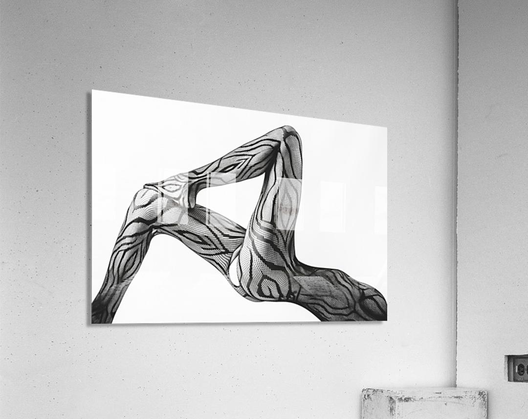 Take ...  Acrylic Print