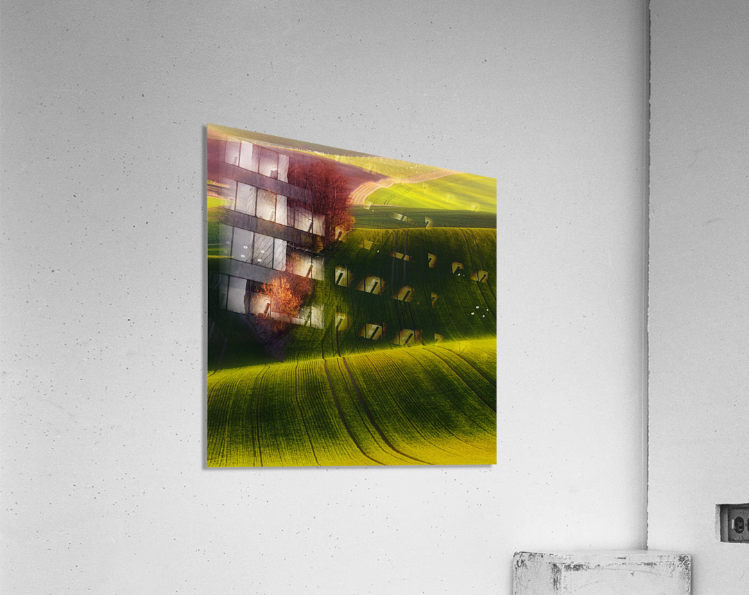 Green fields  Acrylic Print