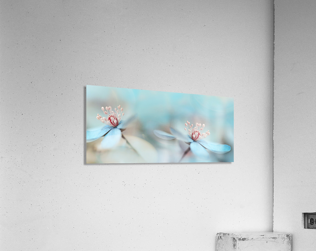The two of us  Acrylic Print
