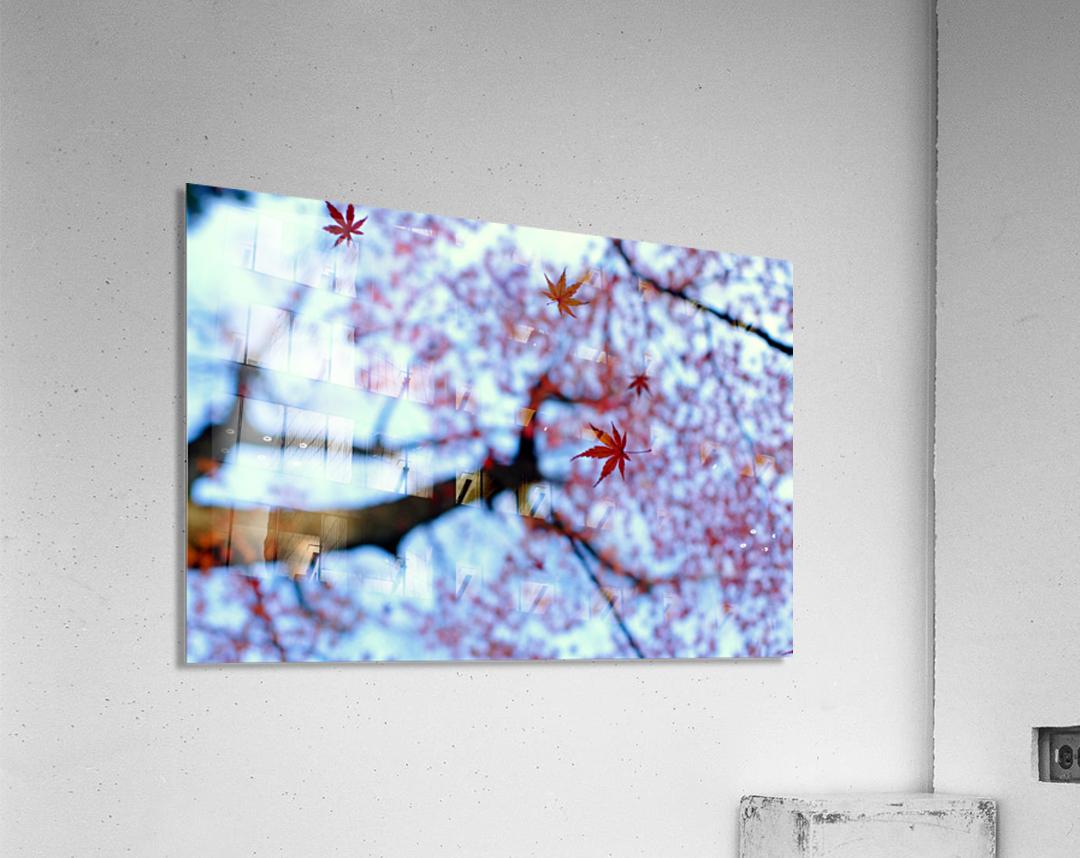 heirinji  Acrylic Print