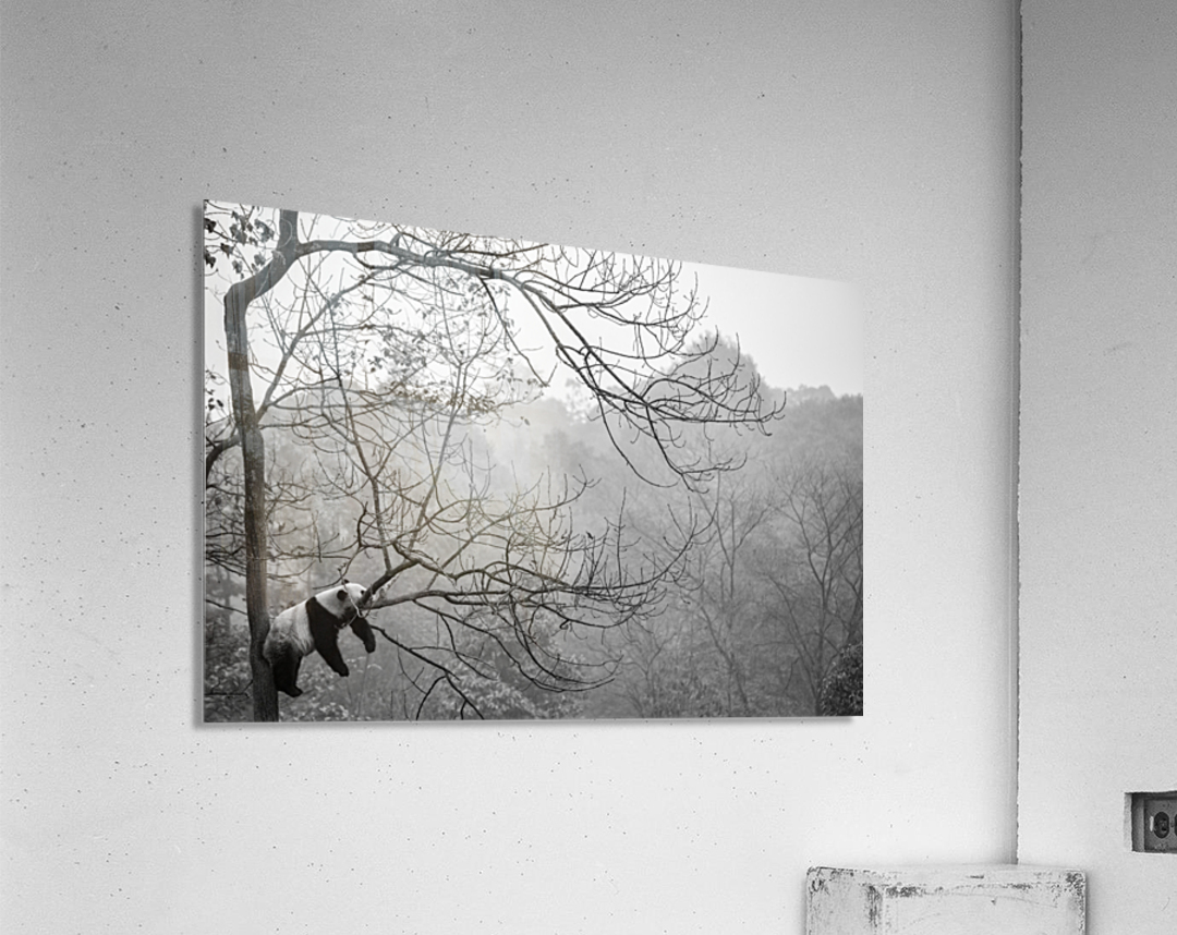 Relax  Acrylic Print