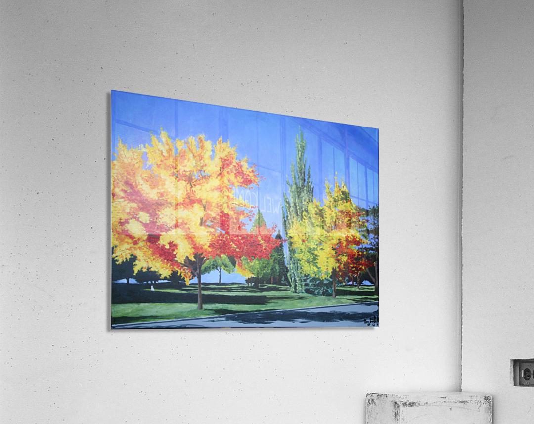 College Trees  Acrylic Print