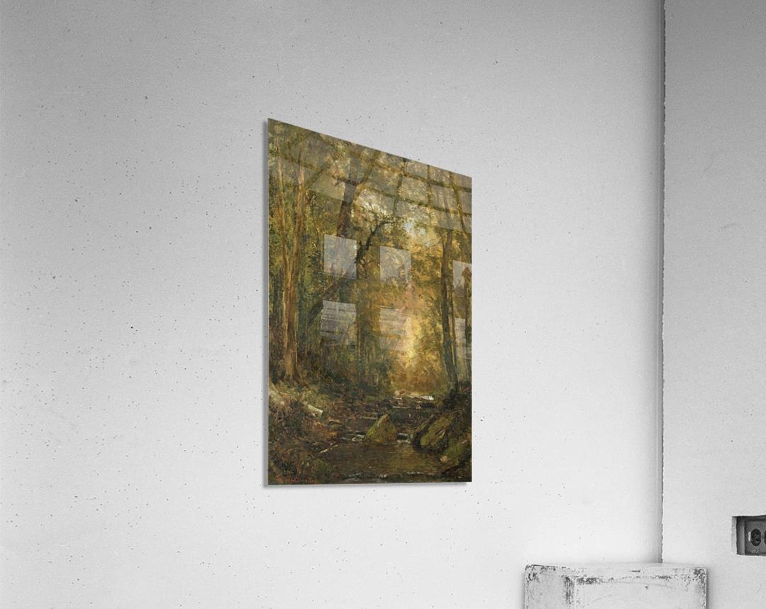 A Catskill Brook  Acrylic Print