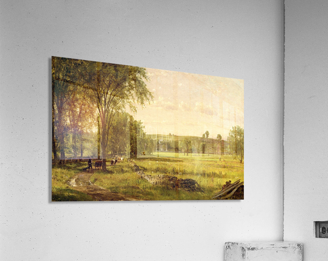 Near Gray Court Junction  Acrylic Print