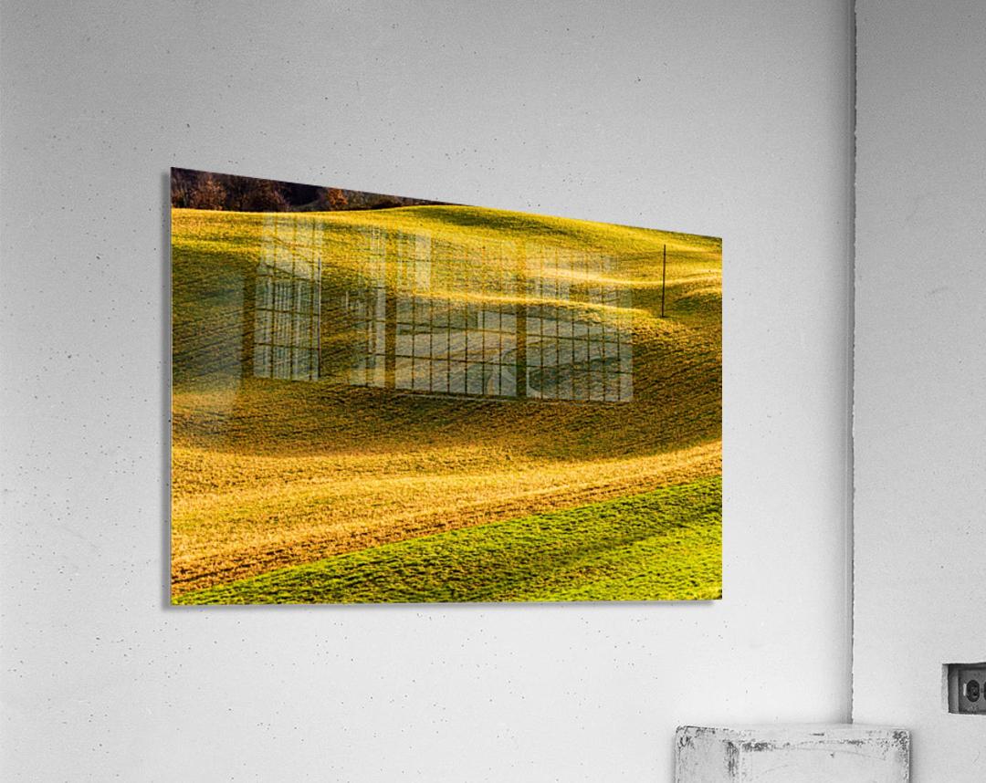 Toano 2  Acrylic Print