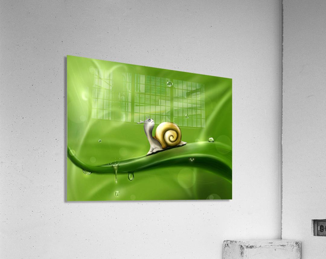 Snail  Acrylic Print