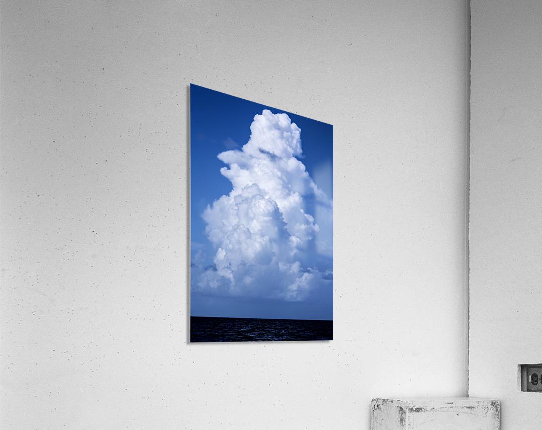 Billowing  Acrylic Print