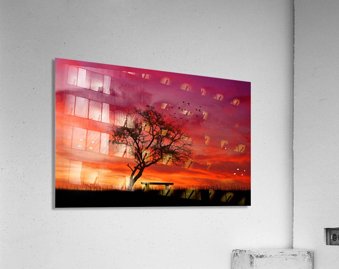 lonely sunset  Acrylic Print