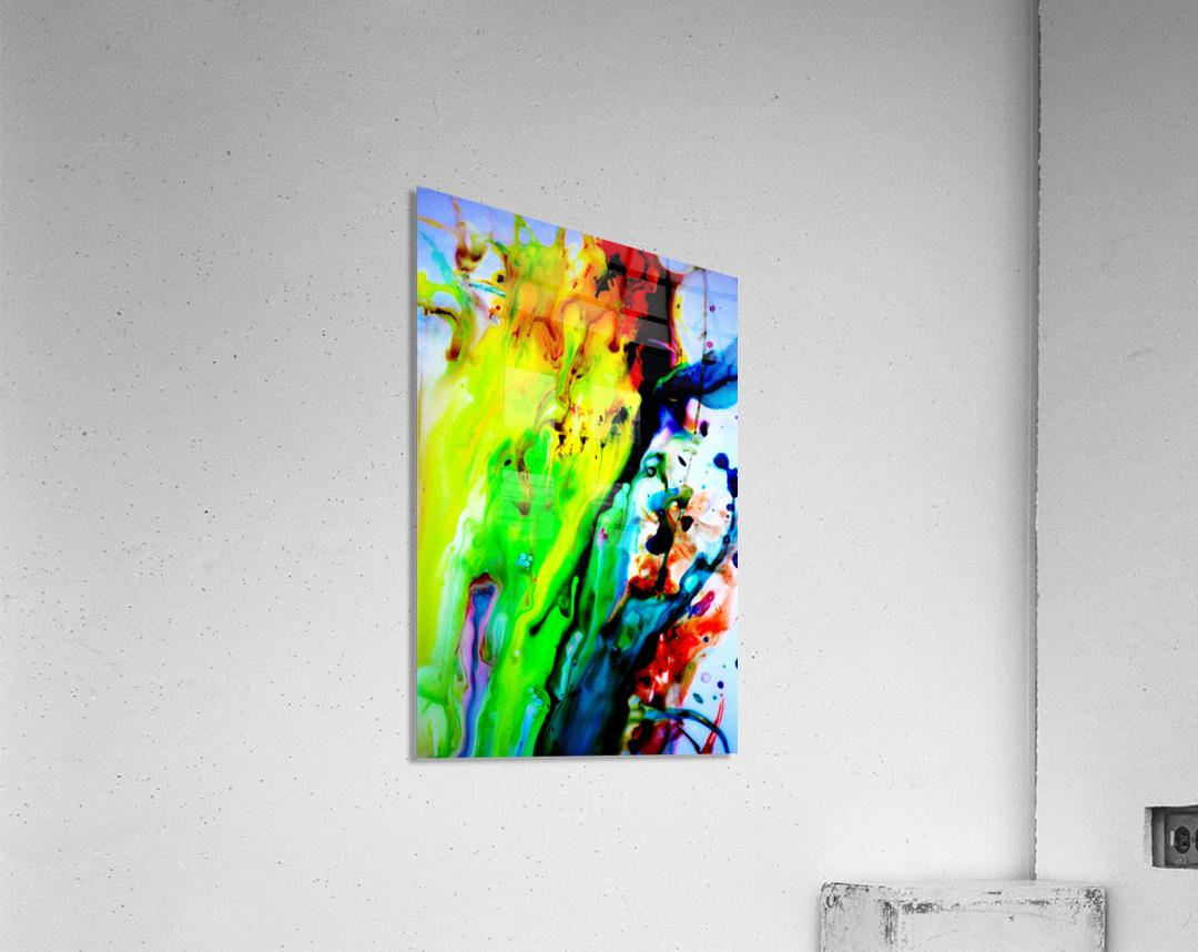 MPS-011  Acrylic Print