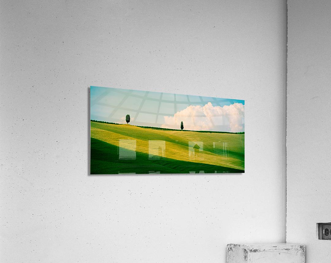 Tuscany Curves  Acrylic Print