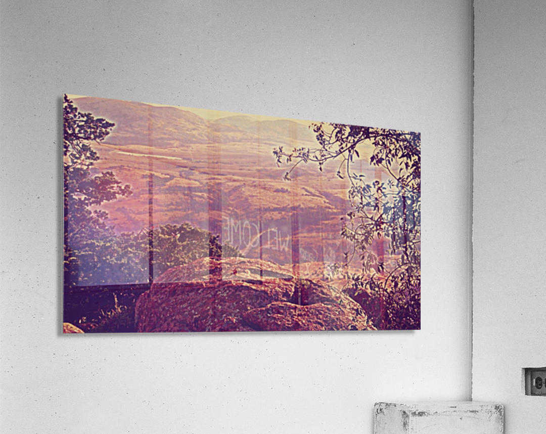 prayingrock  Acrylic Print