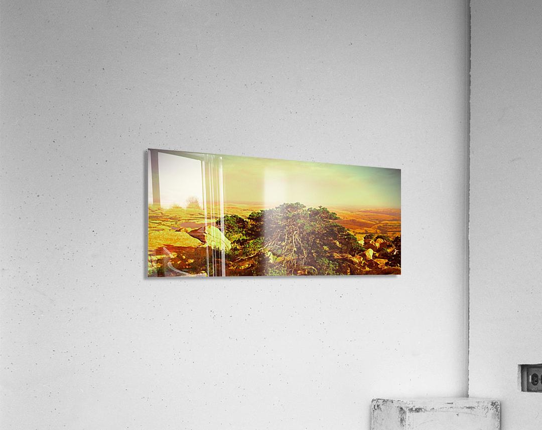 widemountians  Acrylic Print