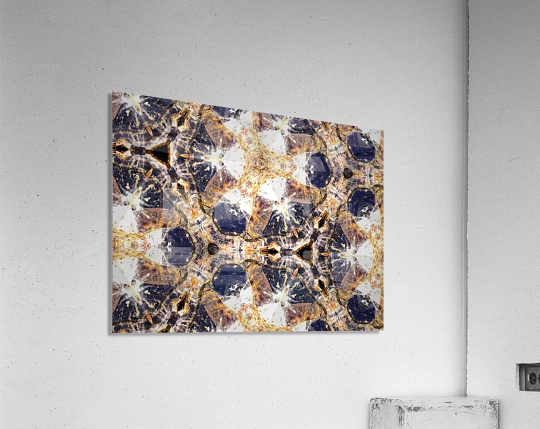 IMG_1504  Acrylic Print