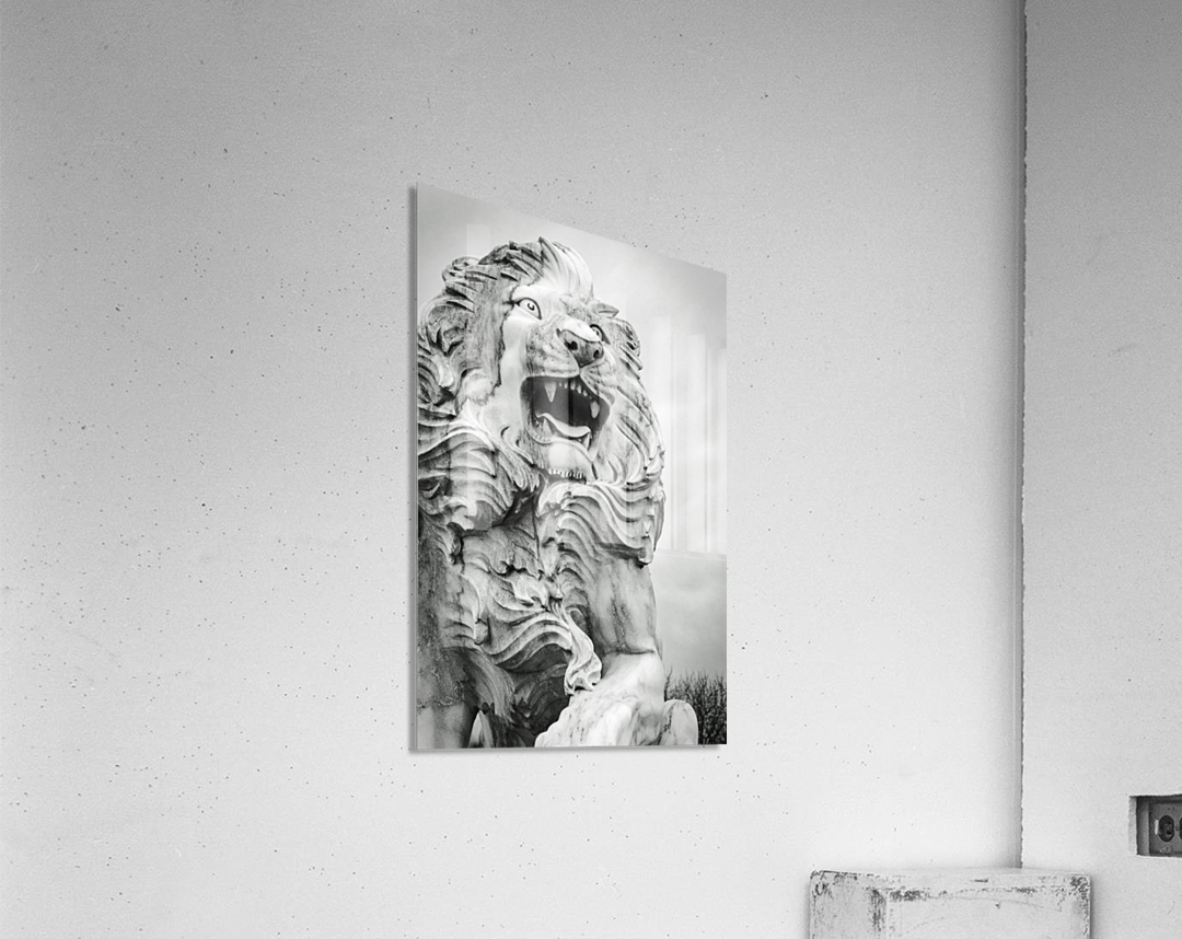 King of the Beast  Acrylic Print