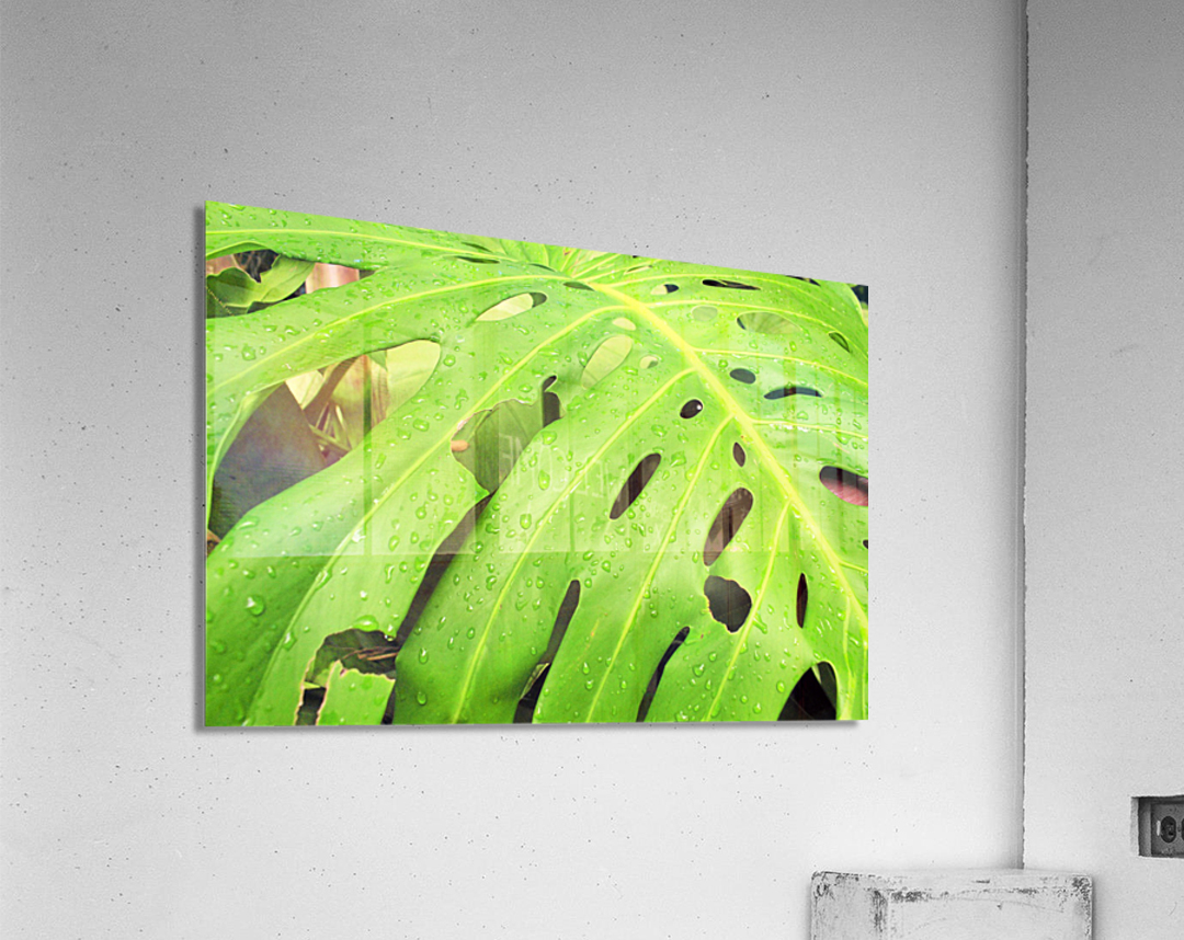 Nevis GR7  Acrylic Print