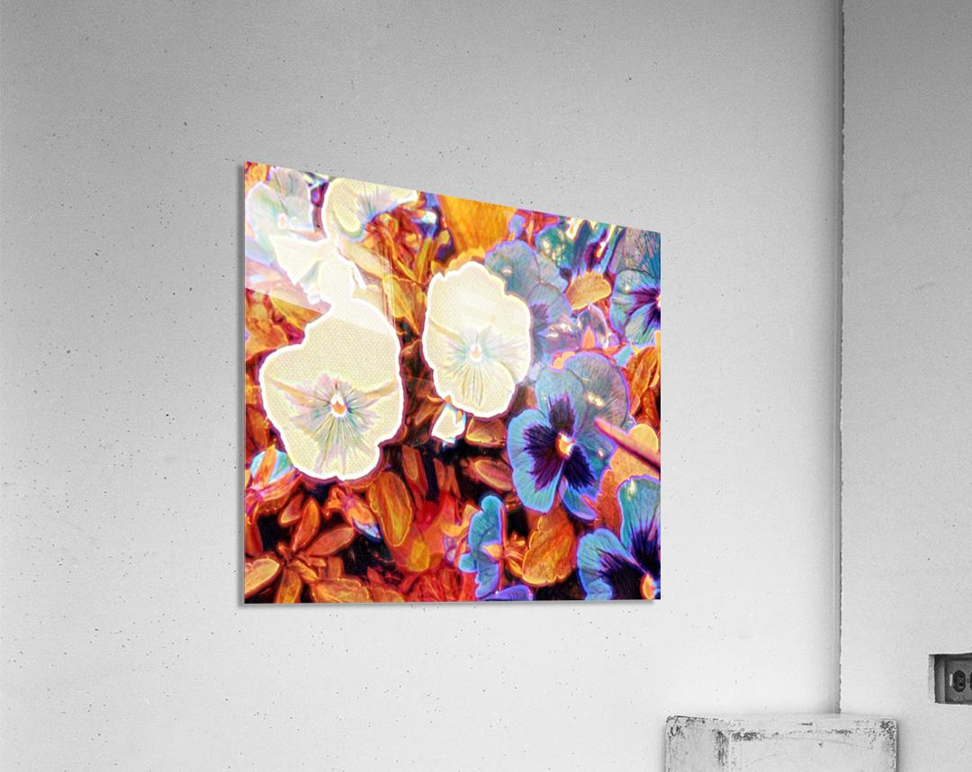 tuesdays  Acrylic Print