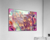 GoldLeaf  Acrylic Print