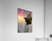 vr  Acrylic Print