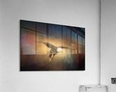 High Altitude  Acrylic Print