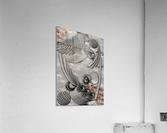 Bourgeoisie Creation  Acrylic Print