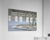 Around the Fence  Acrylic Print