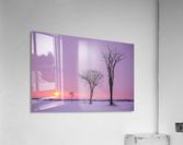 Mirabel mauve  Acrylic Print