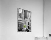 Forêt urbaine  Acrylic Print