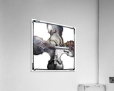 Discord  Acrylic Print