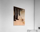 Cane  Acrylic Print