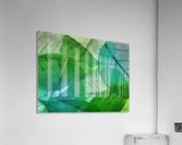 HC0272     Acrylic Print