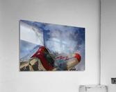 lockheadmodel18  Acrylic Print