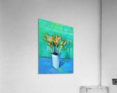 Crocuses  Acrylic Print