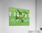 Green Apples  Acrylic Print