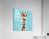 Giraff  Acrylic Print