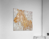 Gold Zebra  Acrylic Print