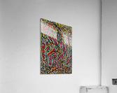 iacodek  Acrylic Print