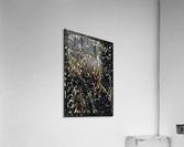 usuna   Acrylic Print