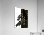 Ode To Aesthetic Dimensionality  Acrylic Print