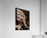 Autumnal Material  Acrylic Print